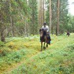Fitnessblog-Reiseblog-reiten-klara-fuchs-schweden