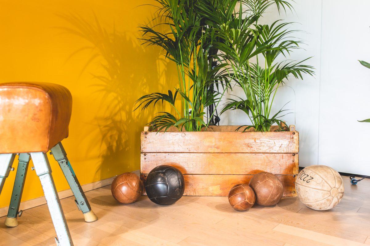 functional fitness area im LOISIUM mit Bällen